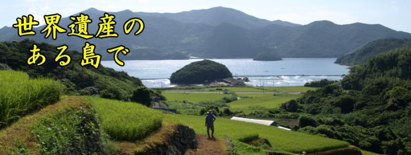 世界遺産のある島で